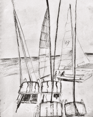 charcoal sketch of the hobie cat boats