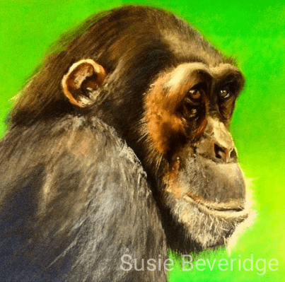 Old Chimp pastel sketch sketched